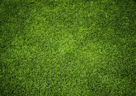 billede-af-graesplaene-muligvis-en-golfbane-eller-en-fodboldbane